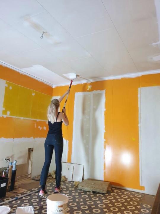 Ane painting walls