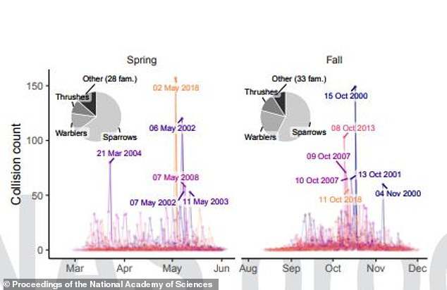 This graphic shows the types of bird which collided withMcCormick Place and the collision count in both the spring and autumn migration seasons