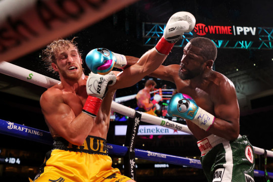 Logan Paul lasted eight rounds in the ring with Floyd Mayweather