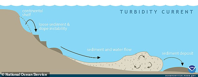 A turbidity current is a rapid, downhill flow of water caused by increased density due to high amounts of sediment