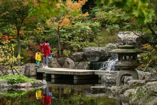kyoto gardens in holland park