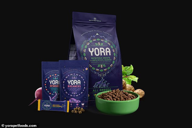 Yora Pet Foods, a British startup, uses the insect ingredient that the firm says needs just two percent of the land required to farm cattle to produce 22 pounds of protein, while generating about four percent of the emissions