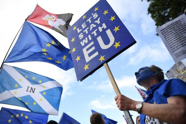 Remainers wanted another referendum on the issue