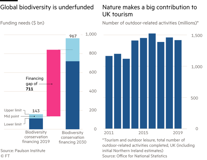 Bar/waterfall chart showing the disparity in global diversity funding and column chart showing Number of outdoor-related activities (millions)* (UK)