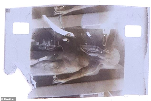 The NFT made from the original, controversial, 1947 Alien Autopsy film. It has a starting bid of 450 ethereum, or more than $1 million