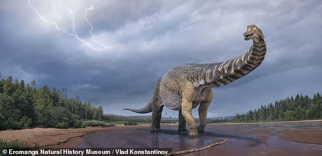 A huge sauropod dinosaur dubbed the 'southern titan' that was as long as a basketball court roamed Australia 96 million years ago, a study found. Pictured:Australotitancooperensis