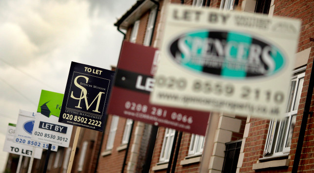A row of estate agents boards