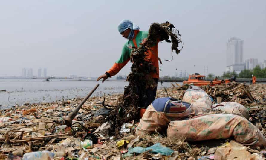 Municipal workers collect rubbish along Jakarta's shoreline.