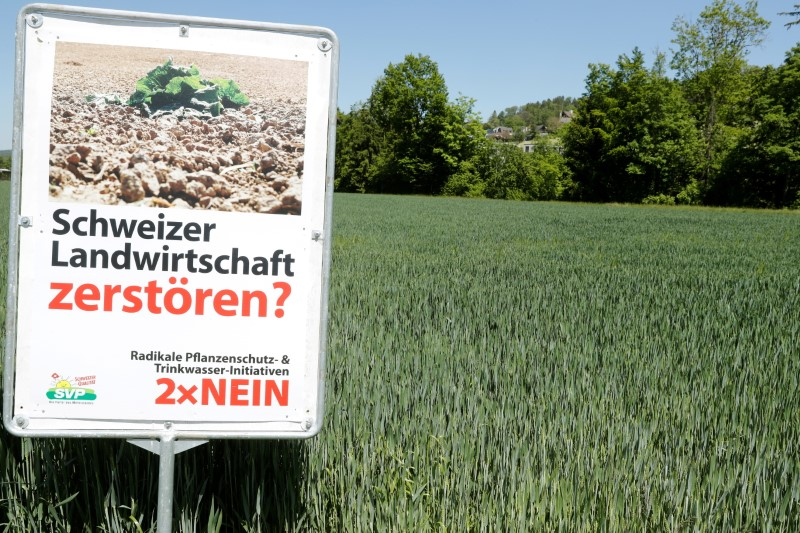 Swiss voters to decide on pesticides ban, terrorism law and COVID-19 aid