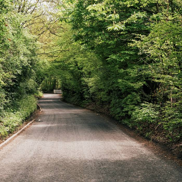 The road between the villages of Theydon Bois and Abridge