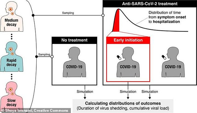 Coronavirus particles tend to multiply quickly in the blood through the first few days of infection, then deplete slowly as the patient recovers