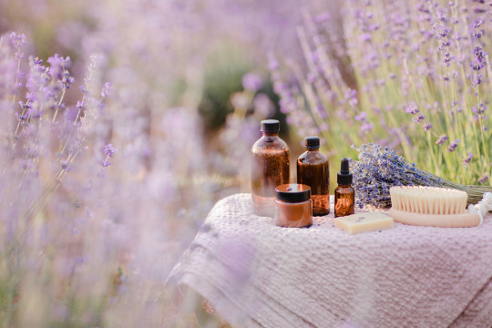 Organic cosmetics bottles, essential oil and soap in lavender field in the summer.