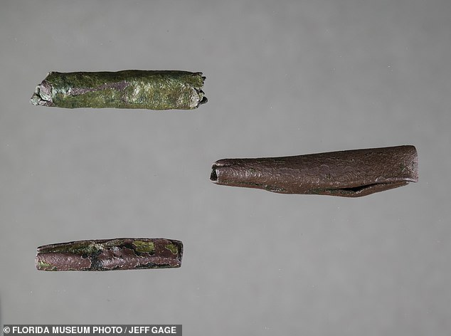 After de Soto demanded 200 Chickasaw men as porters, the tribe attacked the conquistadors as they slept. Pictured: The Chickasaw likely sewed rolled pieces of copper to clothing as 'tinkling ornaments,' according to archaeologists