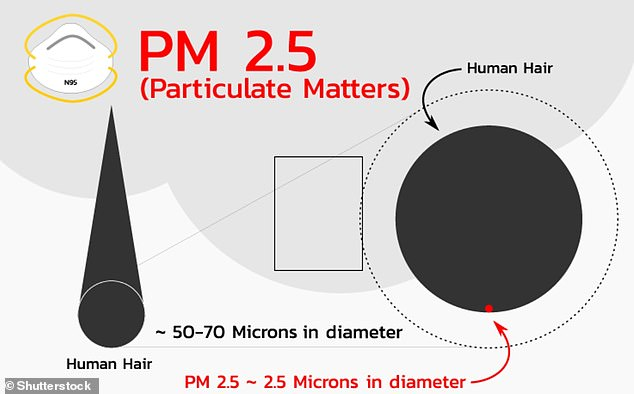 Particulate matter, or PM, comes from a variety of sources, including vehicle exhausts, construction sites, industrial activity or even domestic stoves and ovens. PM 2.5 isparticulate pollutant 2.5 micrometres or smaller in size