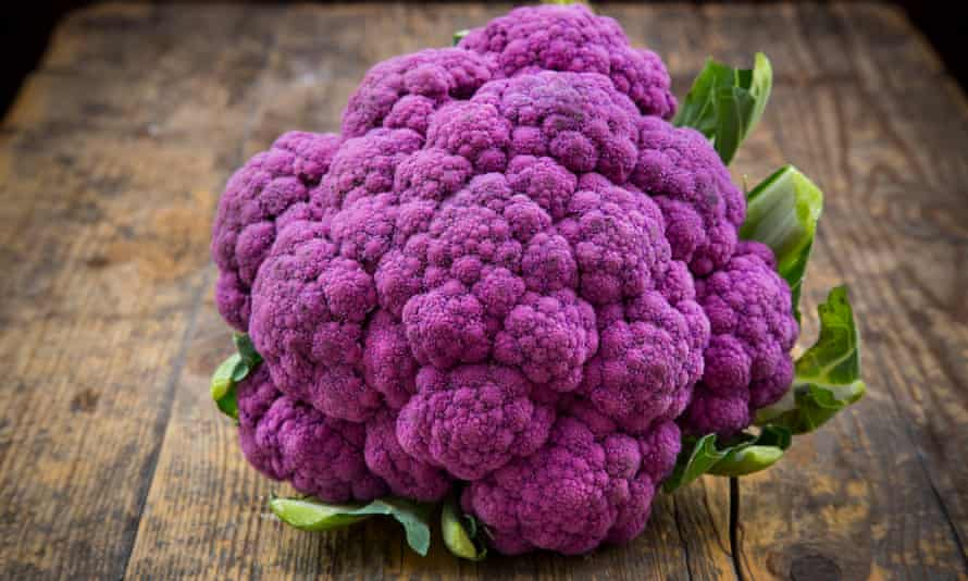 A purple cauliflower