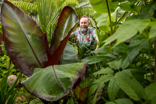 Mike Clifford in his exotic garden
