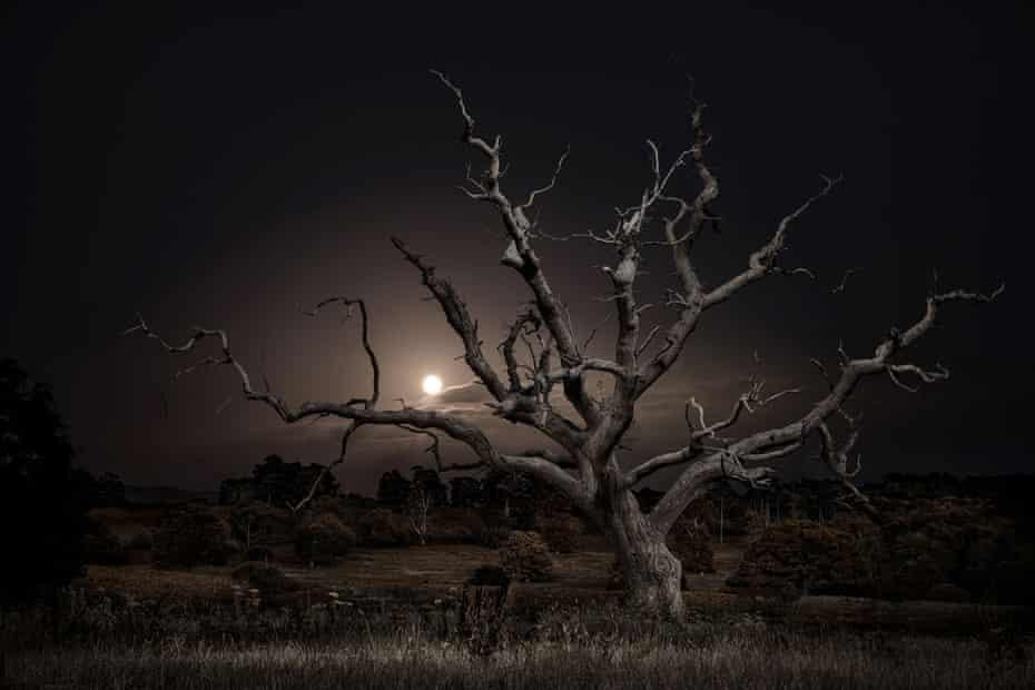 Moonrise, 2020.