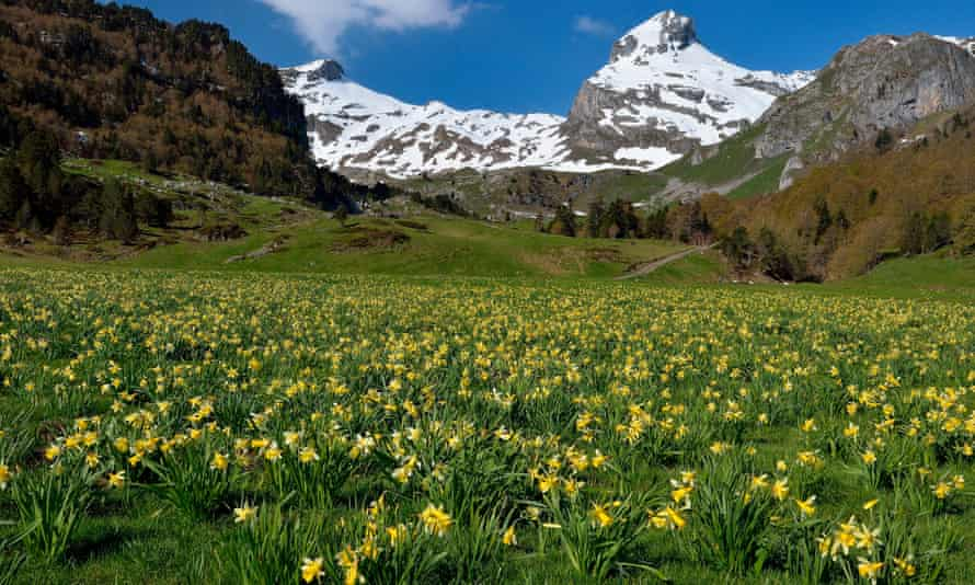 Ossau Valley, Pyrenees National Park