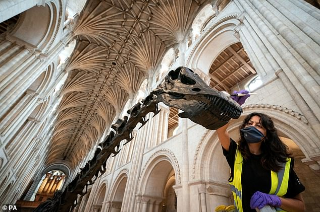 Norwich Cathedral is the eighth and final stop on Dippy's tour and was due to take place in Summer 2020 but was rescheduled due to the coronavirus pandemic