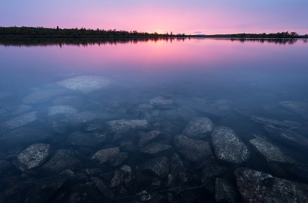 Clear water in Kevo National Park in Lapland, Northern Finland.Kevo reached highs of 92.3°F (33.5°C) on Sunday