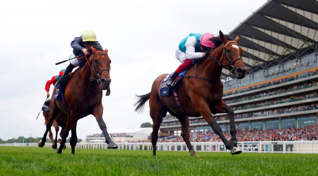 Last Three Winners of the King George Stakes and 2021 Favourites