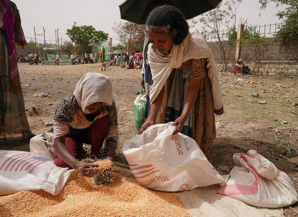 An aid worker distributes measured portions of yellow lentils to residents of Geha subcity at an aid operation run by USAID, Catholic Relief Services and the Relief Society of Tigray