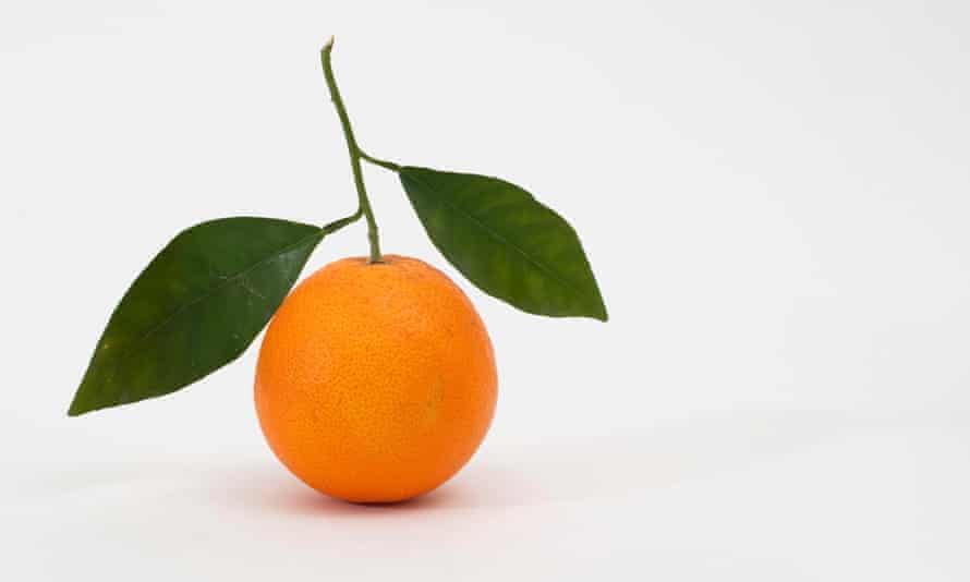 Tangerine against white background