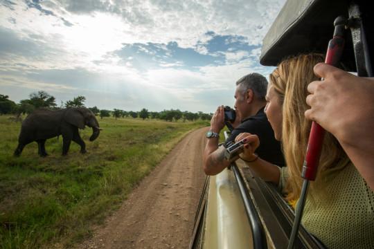 Pepole in safari Jeep photograph an elephant in Kenya