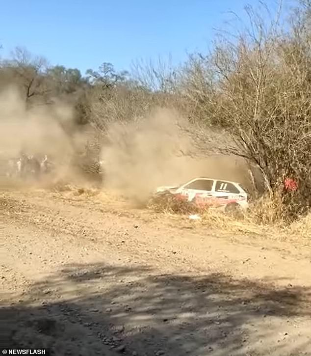 Spectators at a rally car event have avoided serious injuries after ignoring warnings not to stand on the track and being hit by a vehicle