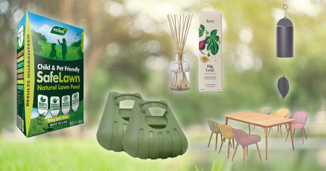 The Grow List: Tools and plants to prepare your garden for autumn