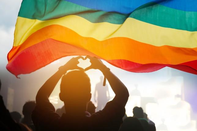 Person holding rainbow flag