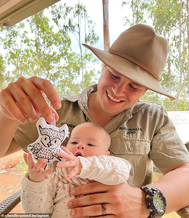 Wildlife warrior: 'Earlier in the day, proud dad Chandler, 24, proved just how much wildlife runs in the genes by posting two photos of his tot reaching out to a plush owl toy
