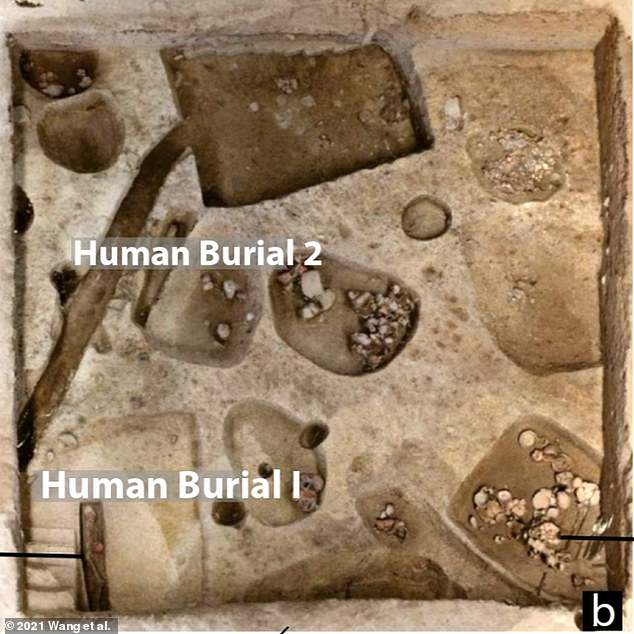 Since 'rice harvesting and processing may have been a labor-intensive task' 9,000 years ago, it's likely that the beer was of significant importance during the burial rituals