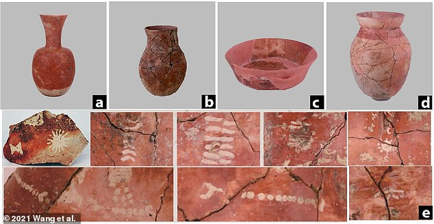 Seven of the 20 pots that were found look like long-necked Hu pots, which have narrow necks and globular bodies (a, b and d)