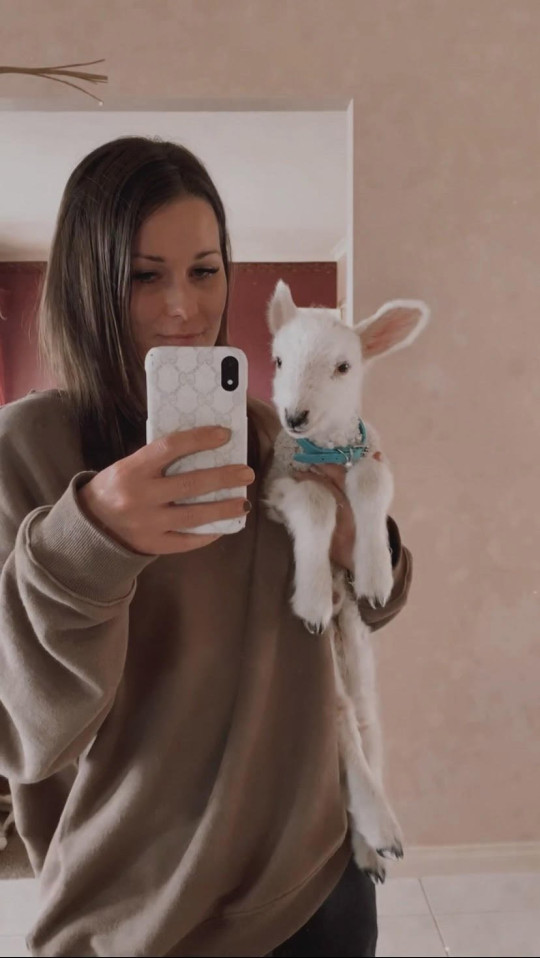 Story from Jam Press (Tiktok Lamb) Pictured: Tamara White with Paxton the lamb when he was 10 days old. Adorable lamb rejected by his own mother moves into farmer's HOUSE ??? even snuggling up with her on the sofa ??? and steals hearts on TikTok. An adorable lamb who was rejected by his own mum has found a surrogate parent in a farmer's daughter ??? even moving into a house with the human. Paxton, who was born on 14 August, has quickly become a TikTok star, racking up 4.9 million views in a clip that has won people's hearts. People are mesmerised by the fluffy lamb although many say he is actually a dog at heart. ???Paxton was born an extremely tiny triplet and rejected by his mother,