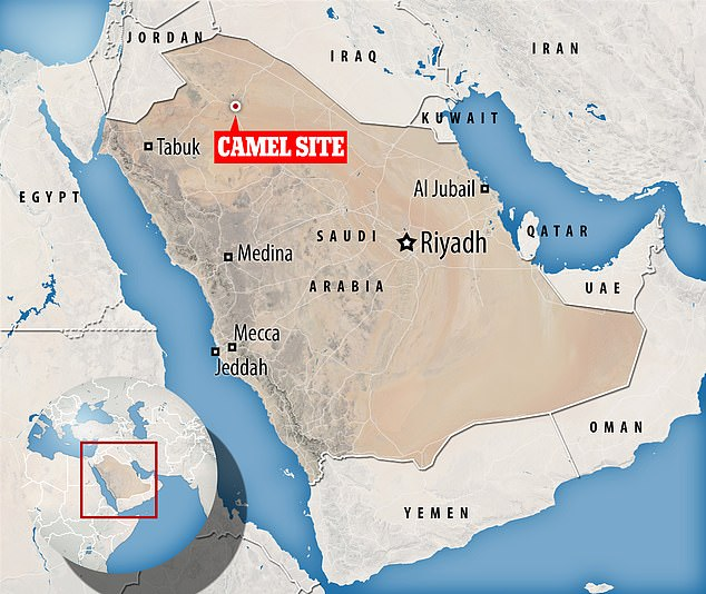 The research on the Camel Site (pictured) has been published in the Journal of Archaeological Science Reports