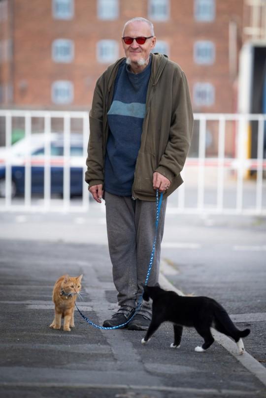 Ian Catmando walking two cats on leads