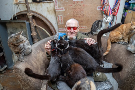 Ian Catmando of Gainsborough, Lincolnshire, at his home he shares with 70 cats.