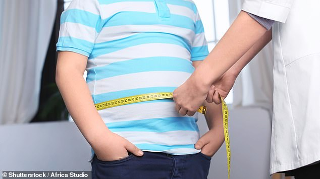 People with obesity are at high risk of heart disease, joint issues, type 2 diabetes and other conditions (File Photo)