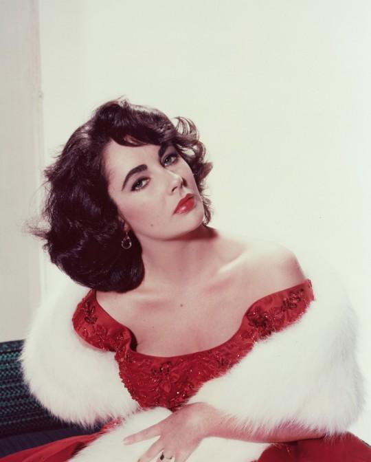 Elizabeth Taylor in a studio portrait in 1955