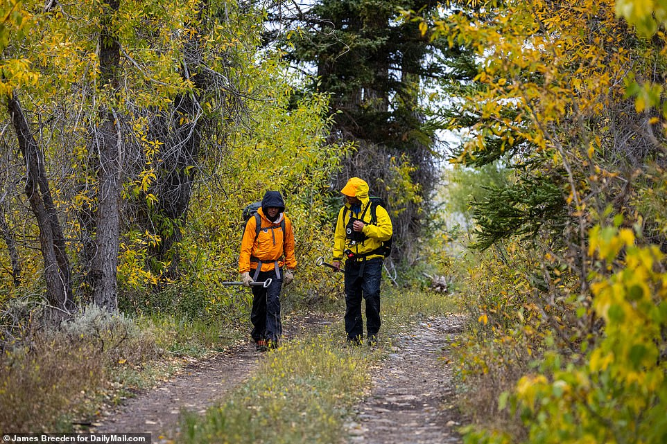 Petito and Laundrie had been parking their van at the Spread Creek Campground according to herthedyrt.com account