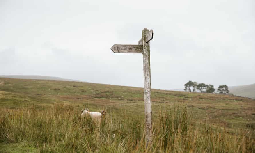 Guardian Travel - Yorkshire Walk. Start of walk on Penine Way