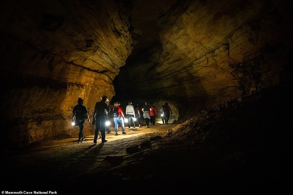 Kentucky's Mammoth Cave is the longest in the world and an additional eight miles of passages have recently been discovered, bringing the cave to at least 420 miles long