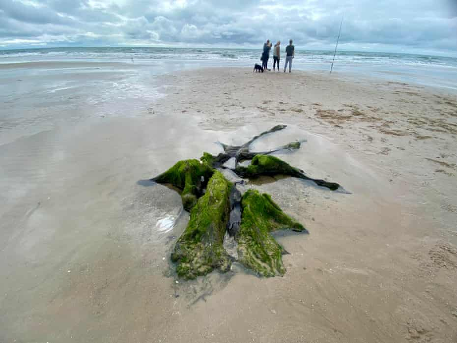 Walkers on the beach between Tywyn and Aberdyfi with ancient tree stump