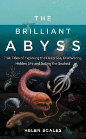 The Brilliant Abyss by Helen Scales book cover
