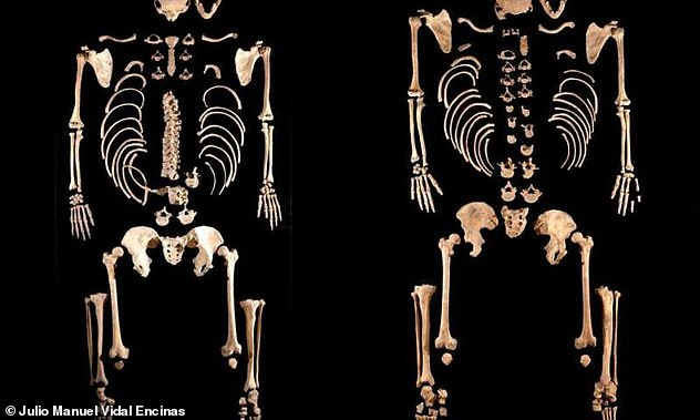 Some of the finds the archaeologists found in the Iberian peninsula. Mesolithic hunter-gatherers found to be brothers.The same shift in genetic material was not observed for women, who remained relatively 'local'