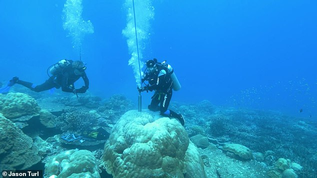 Scientists have extracted a 400-year record of El Niño events using coral reef cores drilled from the Pacific Ocean, revealing crucial new insight on how these weather patterns have changed