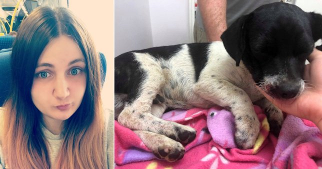 Joanna Tufts (left) who tried to save puppy Asher, who died after being 'kicked in the head' by two youths outside a Co-Op in Ordsall, Nottinghamshire