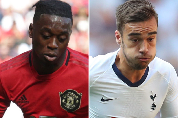 Aaron Wan-Bissaka and Harry Winks are both pushing for a call-up from Gareth Southgate