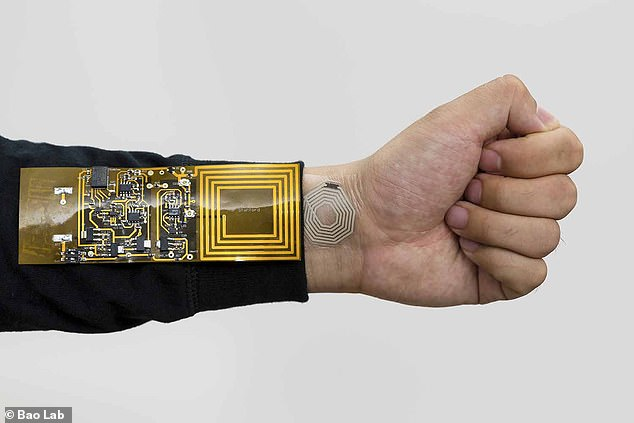Scientists have created a flexible electronic sticker that wirelessly monitors your pulse, respiration and muscle activity. It is pictured attacked to the wrist. It sends information to a receiver attached to clothing, before sending the information to your smartphone